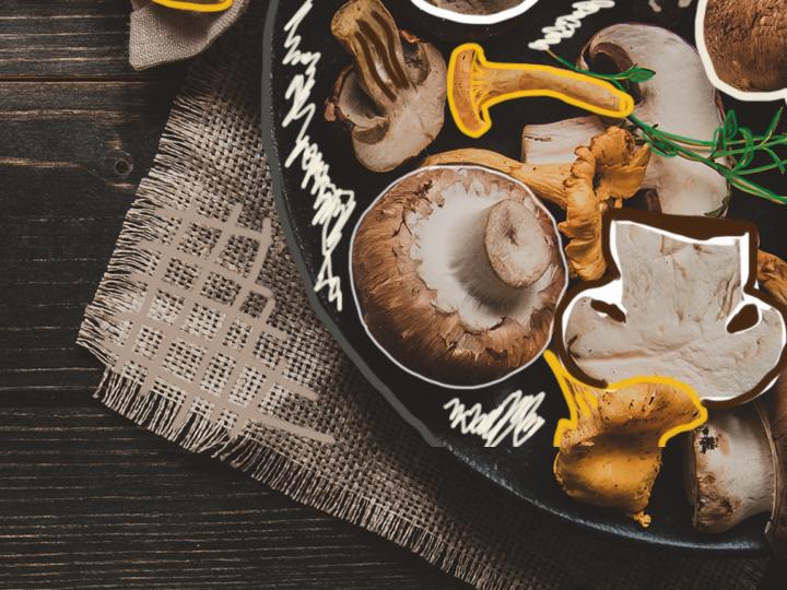 Téma měsíce – houbové speciality